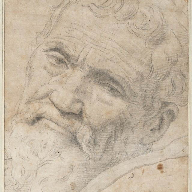 Michelangelo's drawings on tour in the USA