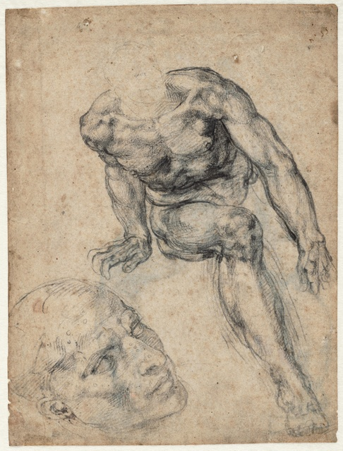 Study of a seated male nude and of a head for the Sistine Chapel