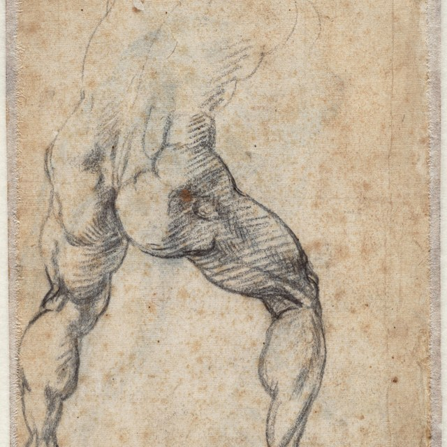 Study for a standing male nude, seen from behind