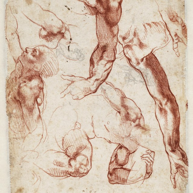 Figure studies for The Creation of Adam in the Sistine Chapel