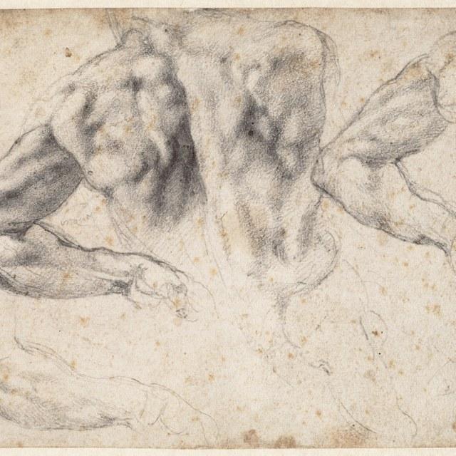 Studie voor de sculptuur 'Dag' op de tombe van Giuliano de' Medici