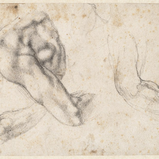 Waarschijnlijk studie voor de sculptuur 'Dag' op de tombe van Giuliano de' Medici