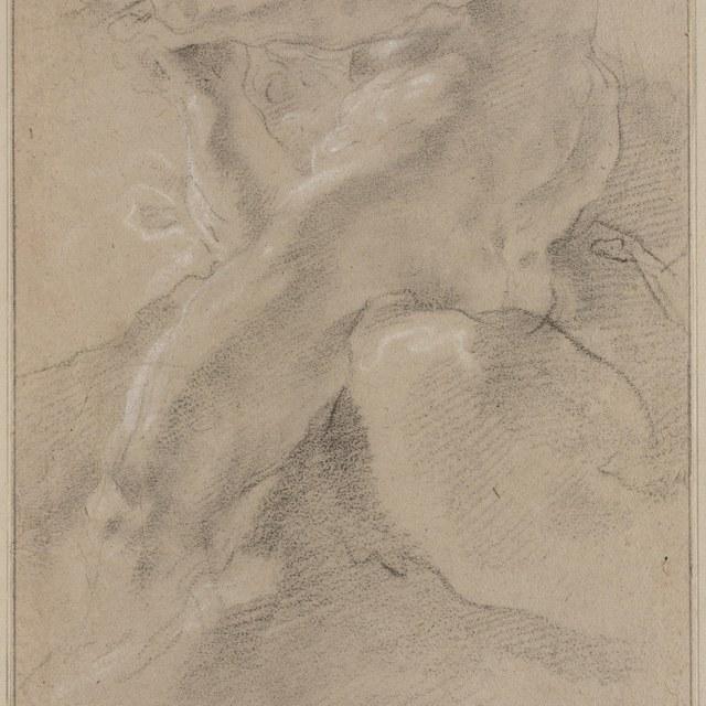 Fluitspelend mannelijk naakt, van onderen gezien