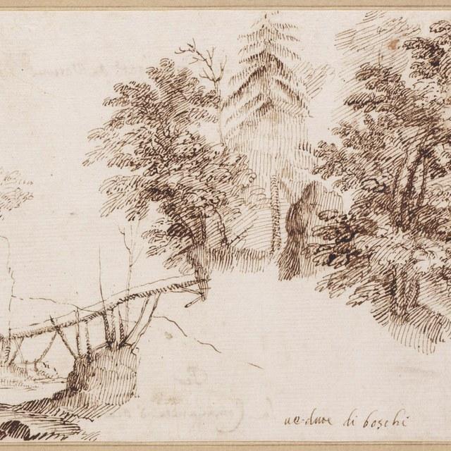 Landschap met brug