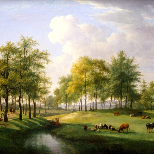 Landschap te Vogelenzang