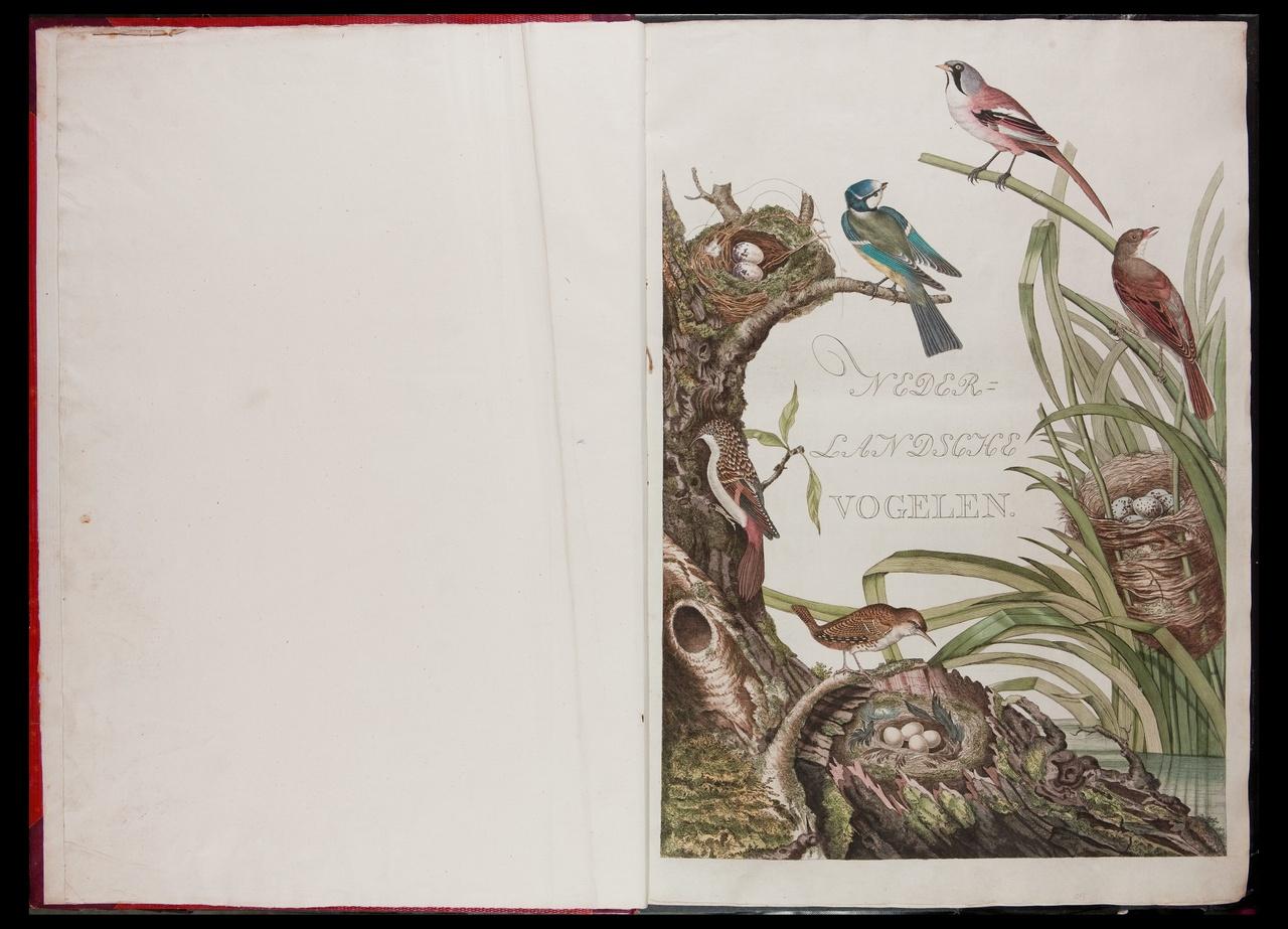 Nederlandsche vogelen; volgens hunne huishouding, aert, en eigenschappen beschreven.