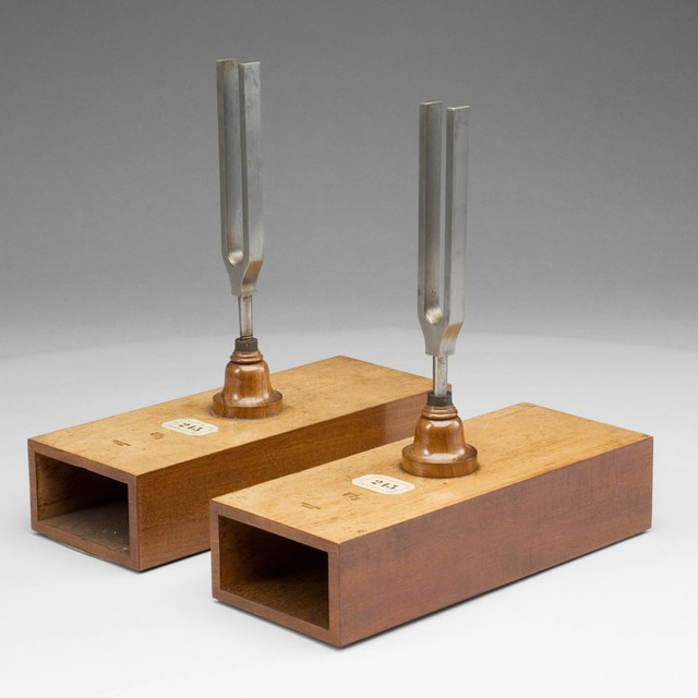 Pair of tuning forks on resonance boxes