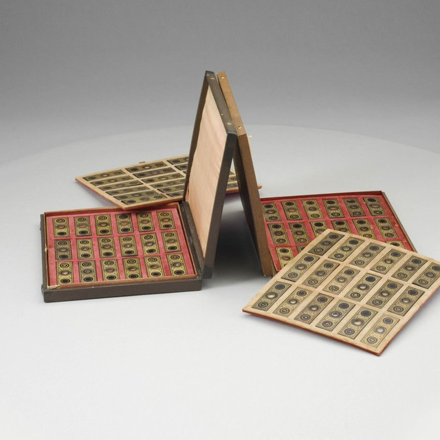 Microscopic preparations of animal material; Case of 50 slides