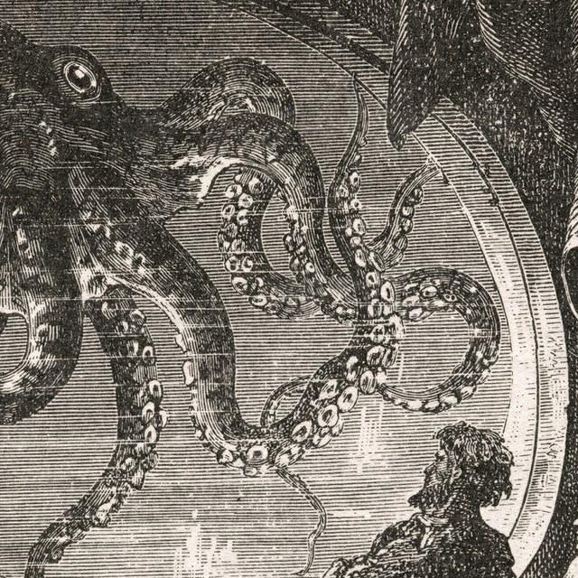 Auke-Florian en de reuzeninktvis