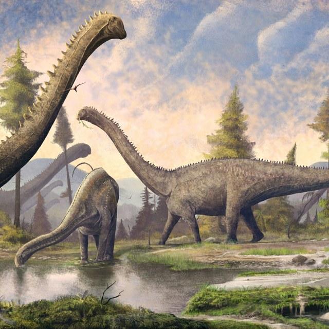 DinoDag