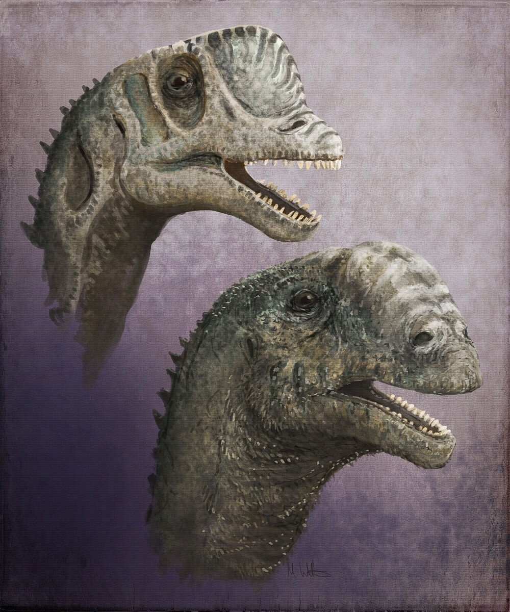 Dinomakers