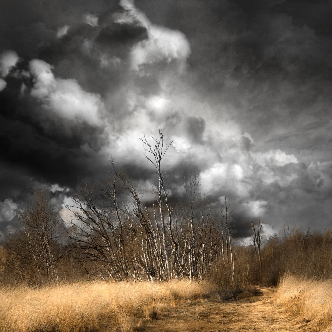 Wolkenfotowedstrijd