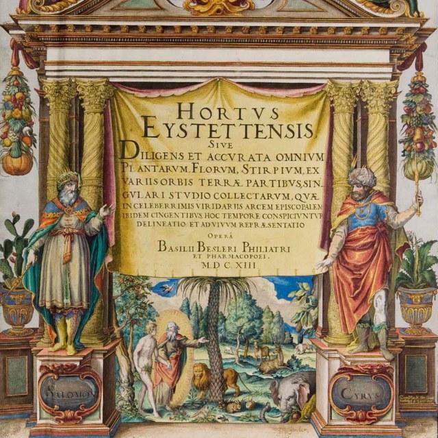 Besler, Basilius (1561-1629)