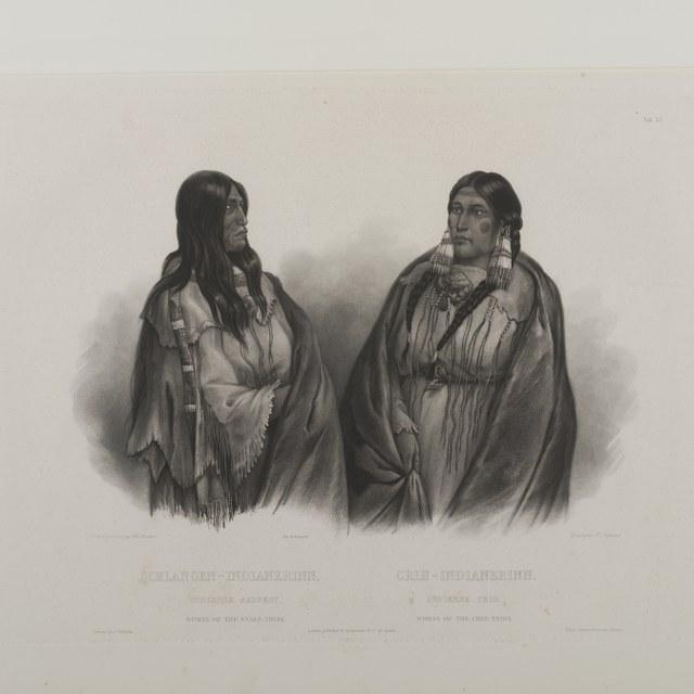 Wied-Neuwied, Maximilian Alexander Philipp zu (1782-1867)