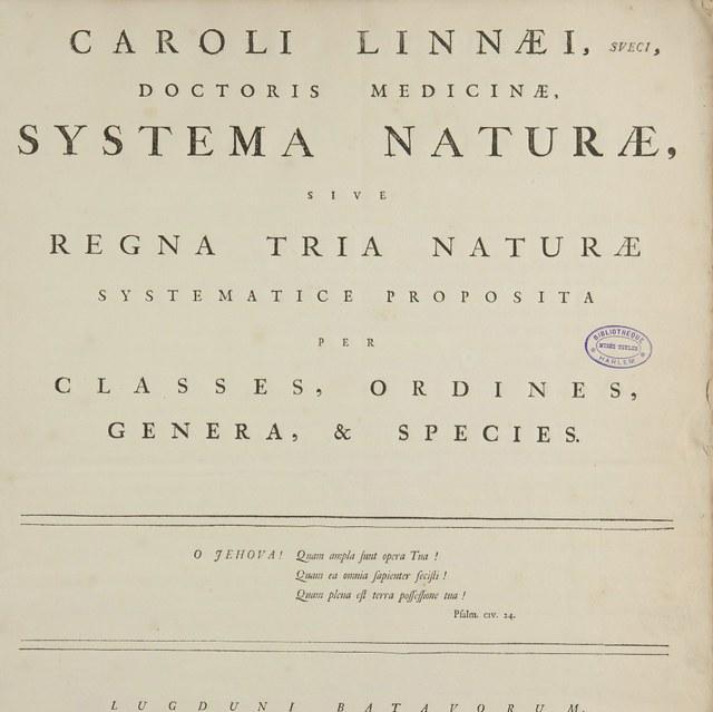 Linnaeus, Carl