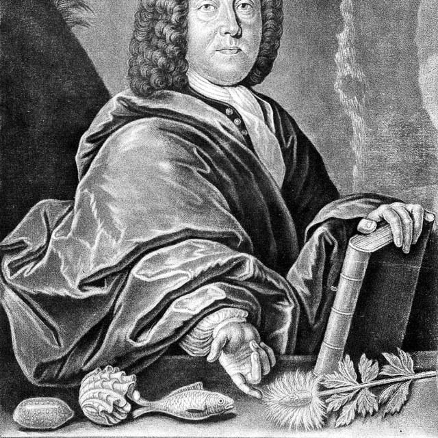 Scheuchzer, J.J.