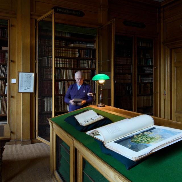Onderzoek en bibliotheek