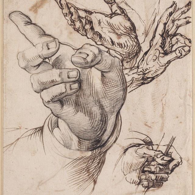 Vier studies van handen