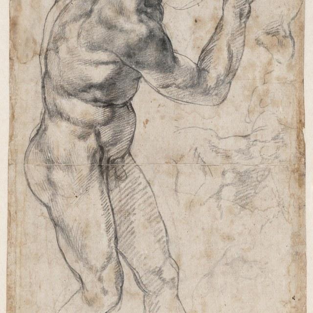 Staand mannelijk naakt, naar rechts gewend