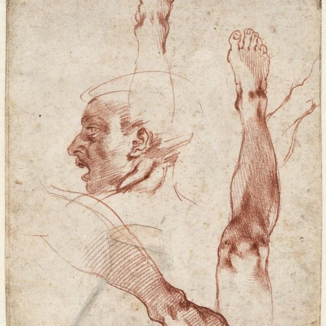 Mannenhoofd  (Ignudo) en figuurstudies