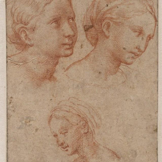 Drie vrouwenkopjes