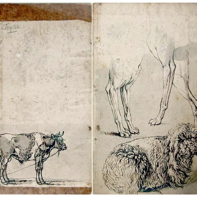 Schetsboekje met dierstudies