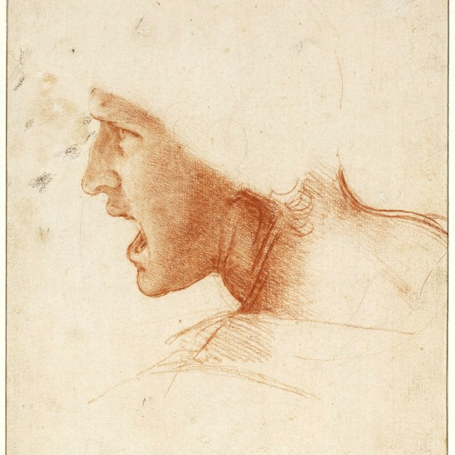 Tekeningen Leonardo da Vinci komen naar Teylers