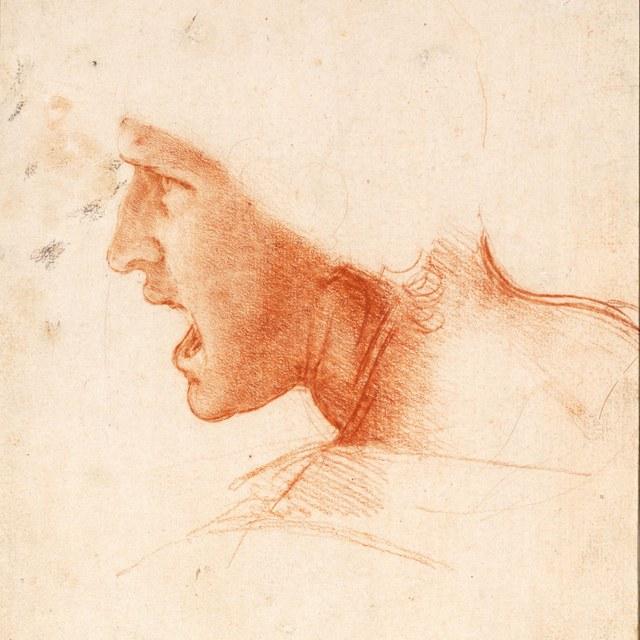 Leonardo da Vinci  komt naar Teylers Museum