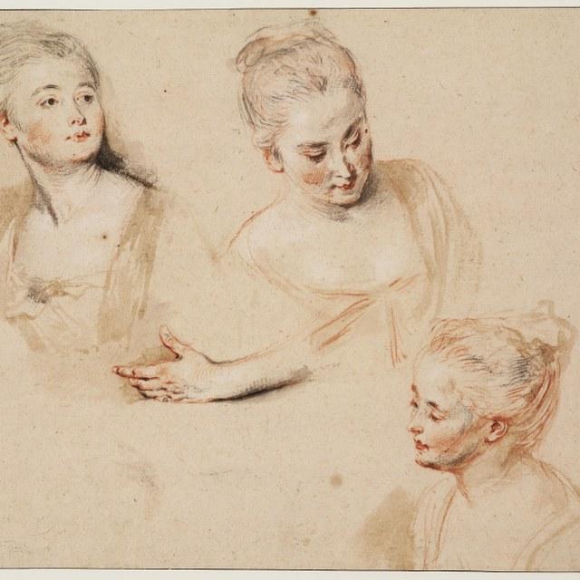 Watteau komt naar Teylers Museum